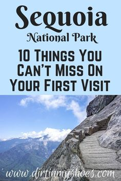 10 Things You Can't Miss On Your First Visit to Sequoia and Kings Canyon - Sequoia National Park is one of the most beautiful places in California, and should be on everybody - California National Parks, Us National Parks, California Travel, Fresno California, California Living, Restaurants In Paris, Camping Outfits, Yosemite Sequoia, New Orleans