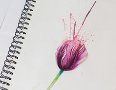 "Check out new work on my @Behance portfolio: ""The watercolor tulip by Alexei Mikhailov"" http://be.net/gallery/50277507/The-watercolor-tulip-by-Alexei-Mikhailov"