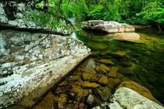 Cranberry River in West Virginia by Thomas R. Fletcher Photography