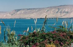 picture of tiberias and sea of galilee - Bing images Beautiful Places To Visit, Places To See, Peaceful Places, The Beattitudes, Israel Travel, Israel Trip, Sea Of Galilee, National Cemetery, Holy Land