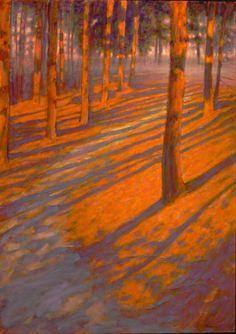 Shadows Among The Pines Rick Stevens