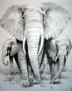 Elephant Drawing - Elephants For David by Shane Guinn Baby Elephant Drawing, Elephant Family Tattoo, Elephant Tattoo Design, Elephant Love, Elephant Art, Elephant Tattoos, Elephant Drawings, Tattoo Familia, Elefante Tattoo