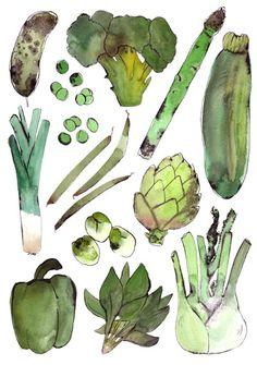 Graphics & Illustration | Vegetables, Bodil Jane