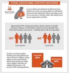 In an era where pet adoptions by Americans from shelters are on the rise, young adults are still almost 50 percent more likely than others to purchase a pet  from a pet store or breeder, rather than adopt from a rescue organization or shelter.