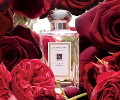 Jo Malone London:Red Rose for Pink Ribbon Campaign