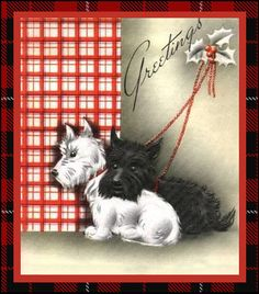 Merry Christmas from Second Twirl to all the wonderful Pinners that follow my Tartan board!   Appreciate you!
