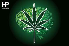 Marijuana Is Making People More Creative- True Or False? Benefits Of Not Smoking, Marijuana Facts, Smoking Weed, Plant Leaves, Make It Yourself, Health, Creative, How To Make, Health Care