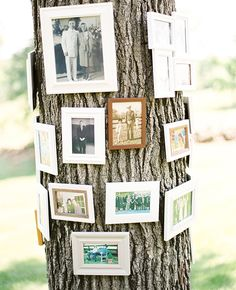 A family tree for the wedding | Sweet Tea Photography | blog.theknot.com