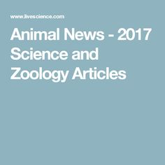 Animal News - 2017 Science and Zoology Articles