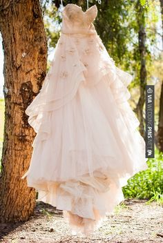 Awesome - Rustic woodland wedding  |  our hearts photography | CHECK OUT MORE IDEAS AT WEDDINGPINS.NET | #weddings #rustic #rusticwedding #rusticweddings #weddingplanning #coolideas #events #forweddings #vintage #romance #beauty #planners #weddingdecor #vintagewedding #eventplanners #weddingornaments #weddingcake #brides #grooms #weddinginvitations