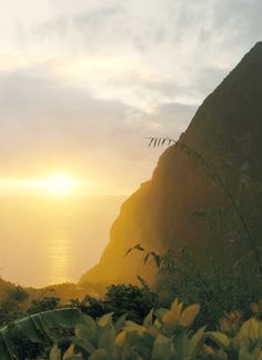 #Jetsetter Daily Moment of Zen: Ladera in St. Lucia