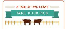 What Would Happened If You Had Two Cows In Different Parts Of The World – 15 Pics