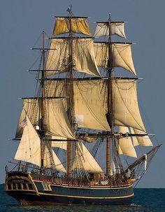 The Bounty   lost at sea