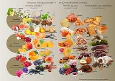 Aromas of Champagne #wine #wineeducation #champagne #france #winetasting