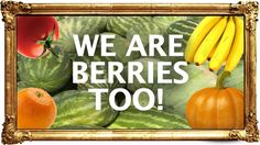 ha ha ha - relearn & unlearn your berries