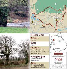 Que d'arbres et que d'eau dans la forêt de Senonches ! - Fontaine-Simon (28240) - L'Echo Républicain