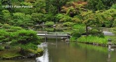Japanese Garden by violet0321