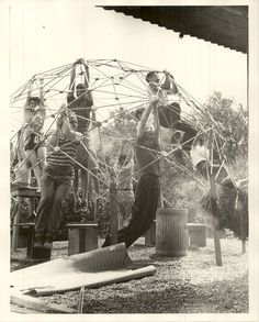 Buckminster Fuller's students building a geodesic dome. From the Black Mountain College Research Project Papers, Visual Materials, North Carolina State Archives, Raleigh, NC