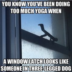 . Everything is yoga. Via @scanduck. FOLLOW US. by yogimemes