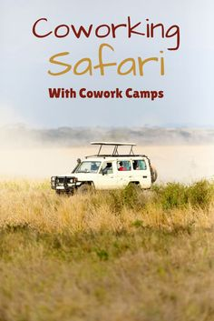 Join 19 entrepreneurs for one month to experience a coworking experience of a lifetime. Enjoy working and living in  Ever dream of living and working  in the largest safari reserve in South Africa Kruger Park with CoWork Camps. |Digital Nomads Africa, Cow