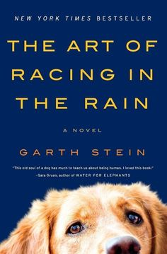 The Art of Racing in the Rain by Garth Stein | 27 Seriously Underrated Books Every Book Lover Should Read