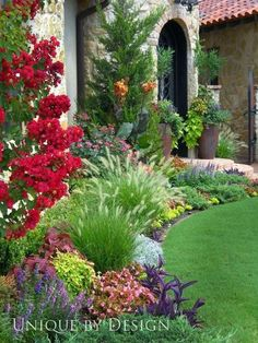 Large sweeping curve, beautiful plants, textures and colours.