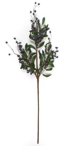 "Our 30"" blueberry stem looks like the real thing. Display in a vase or use them to create your own fruit stem arrangement or mix them together in a floral arrangement to create a beautiful flower cent"