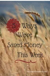 5 Ways We've Saved Money This Week - #Frugal ideas you can use to save your family money this week. http://www.mediumsizedfamily.com/5-ways-weve-saved-money-this-week-5/?utm_content=buffera5bda&utm_medium=social&utm_source=pinterest.com&utm_campaign=buffer#more-951