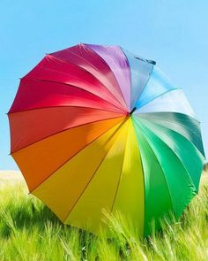 Rainbow-Bright: 11 Colorful Summer Accessories to Inspire You ~ LOVE This Umbrella! (It's a colorful rainbow while it's raining & represents the rainbow after the rain). Over The Rainbow, Love Rainbow, Taste The Rainbow, Rainbow Colors, Rainbow Unicorn, Rainbow Stuff, Colors Of The World, All The Colors, Vibrant Colors