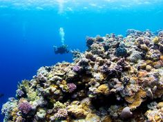 10 Natural Wonders - The Great Barrier Reef, Australia spans more than 1200 miles of crystal water along the reef.
