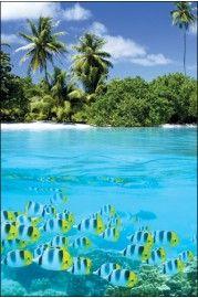 Tropisch Landschap ll