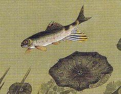 17_蓮池遊魚図-0004