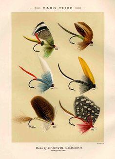 bass flies glorious fly fishing print no. 2. $12.50, via Etsy. Whole set available.