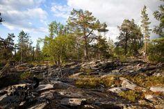 Oratunturi fell in Finnish Lapland. Photo by Jani Kärppä. #filmlapland #arcticshooting #finlandlapland