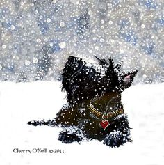Scottish Terrier in Snow...best dogs in the world <33333
