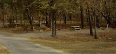 Cheaha State Park S4 Campground # 1
