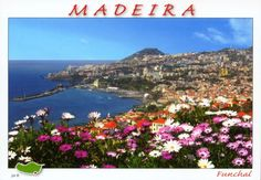 """See 446 photos and 16 tips from 3759 visitors to Funchal. """"Funchal is the largest city, the municipal seat and the capital of Portugal's Autonomous. Portugal, Funchal, River, Mountains, World, City, Postcards, Posts, Outdoor"""