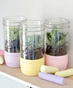 DIY succulent pastel painted mason jars