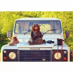 Well when your friend turns up in a pretty truck it would be rude not to pose on it ...   #photoshoot #dog #landrover #defender #barbour #countryliving #adventure #wales #england #landroverdefender by lexillustration Well when your friend turns up in a pretty truck it would be rude not to pose on it ...   #photoshoot #dog #landrover #defender #barbour #countryliving #adventure #wales #england #landroverdefender