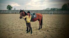 Koń Filipek