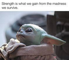 Yoda Meme, Yoda Funny, Inspirational Wallpapers, Inspirational Quotes, Yoda Images, Yoda Pictures, Funny Cute, Hilarious, Thats The Way