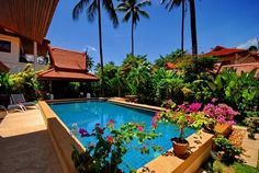 Love the warm and tropical feel of the planting around the pool.