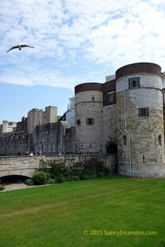 A Test to Tour the Tower of London? - Sunny in London