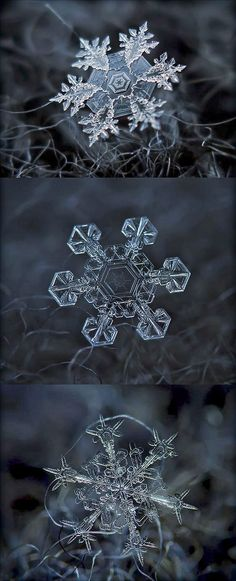 Macro images of snowflakes - DIY Technique. Takes my breath away! - Macro images of snowflakes – DIY Technique. Takes my breath away! Amazing Photography, Nature Photography, Snowflake Photography, Photography Ideas, Levitation Photography, Exposure Photography, Photography Portraits, Winter Photography, Beach Photography