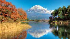 If you want the best views of Mt. Fuji as well as the fall foliage, visit Lake Tanuki at Fujinomiya City in the Shizuoka Prefecture. Shizuoka, Fuji, Nice View, Mount Rainier, Things To Do, Japan, Mountains, City, Travel