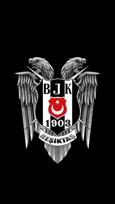 Eagles, Ottoman, Black, Sports, Model, Weapons Guns, Hs Sports, Eagle, Black People