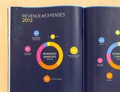 graphiques camemberts revenue expenses activity report eurordis mise en page