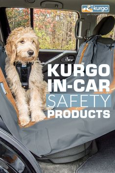 Hiking Dogs, Dog Car Seats, Dog Safety, Pet Travel, Cute Dogs And Puppies, Pet Carriers, Losing A Pet, Dog Harness, Dog Design