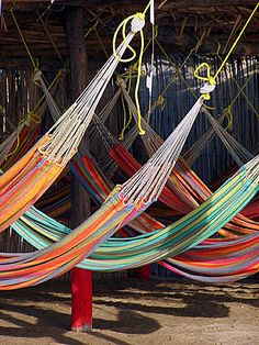 Hammocks at Guajira, Colombia