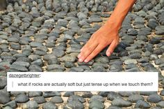 28 Everyday Things Tumblr Will Make You Question - BuzzFeed Mobile